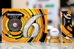 Bridgestone e6  Ball